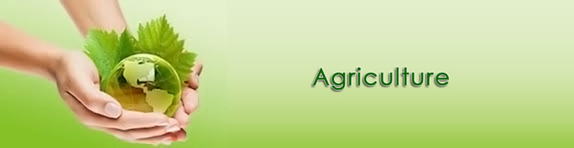 BSC Agriculture In Pakistan Scope, Subjects, Syllabus
