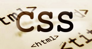 CSS Fee Structure
