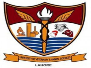 University Of Veterinary And Animal Sciences UVAS Lahore Fee Structure, Contact