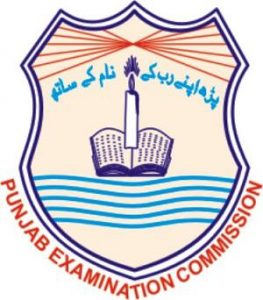 PEC Punjab Board 5th, 8th Class Roll Number Slips 2017 Download Online