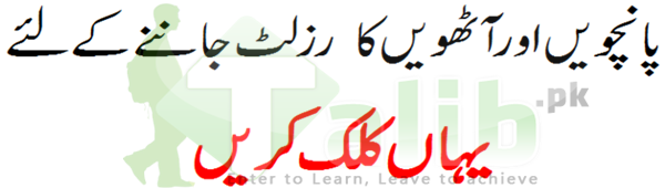 5th And 8th Class Result Lahore Board 2017 31st March Download