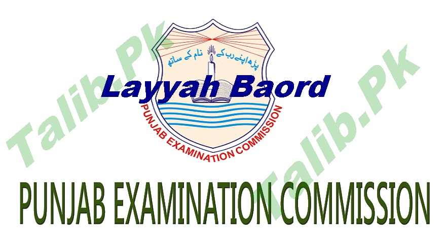 Layyah Board PEC 8th Class Result 2017 Check Online