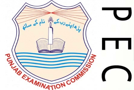 PEC 5th Class Result 2017 All Punjab Districts