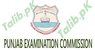 PEC 5th Class Result 2015 PDF Download