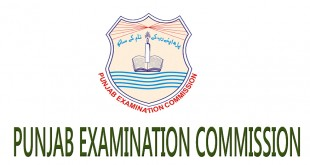 PEC 8th Class Result 2019 All Punjab Districts