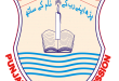 PEC 8th Class Result 2015 Nankana Sahib Download Roll No Wise