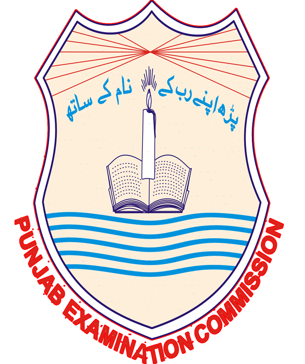 PEC 8th Class Result 2018 Nankana Sahib Download Roll No Wise