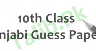 Punjabi Guess Paper 10th Class 2018 Lahore Board Important Questions