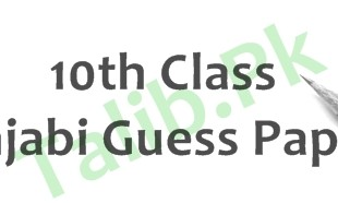 Punjabi Guess Paper 10th Class 2016 Lahore Board Important Questions