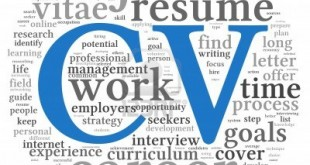 Professional CV Format In MS Word Doc Free Download PDF 1