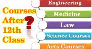 Top Professional Courses After 12th Engineering, Medical, Arts, Commerce