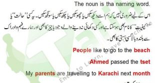 Noun Definition And Examples In Urdu Kinds Of Noun