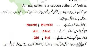 Interjection Definition And Examples In Urdu With Exercise Sentences