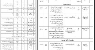 Pakistan Science Foundation PSF Jobs 2016 Online Application Form