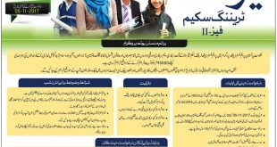 National Internship Program NIP 2018 Apply Online Application Form