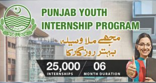 Punjab Youth Internship Program PYIP 2018-2019