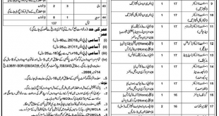 Walled City Of Lahore Authority WCLA Jobs 2017 NTS Application Form, Test Date