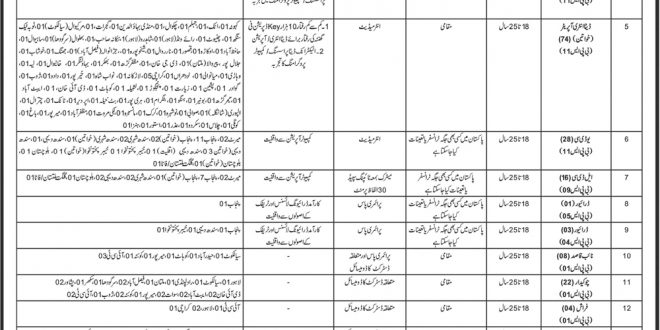 Immigration And Passport Jobs 2019 OTS Application Form