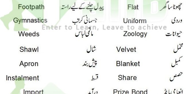 most tricky urdu key phrases who my spouse and i employed on essay