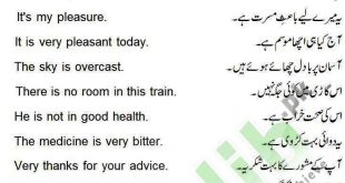 daily use english sentences with urdu translation