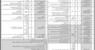 Employees Old Age Benefits EOBI Jobs 2017 www.eobi.gov.pk Form Online Download