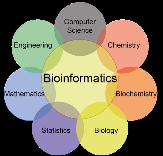 Bioinformatics Scope In Pakistan Jobs, Salary, Subjects, Universities