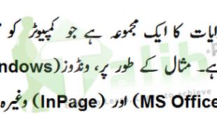Computer Software Definition In Urdu