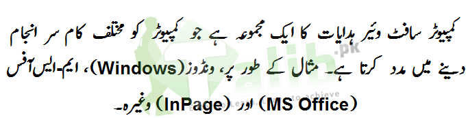 Computer Software Definition In Urdu With Types And Examples