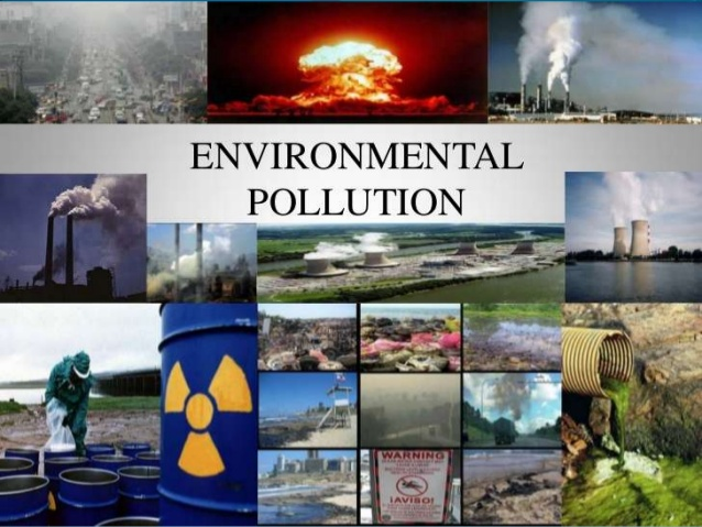 Causes and Effects of Pollution on Environment Essay