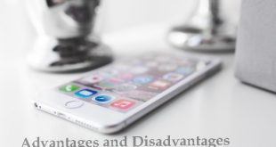Mobile Phone Advantages and Disadvantages Essay