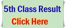 5th Class Result 2019 Roll Number Wise