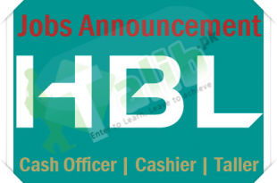 HBL New Cash Officer Jobs 2020